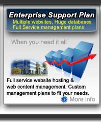 Full Service web management and web hosting